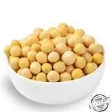 本地 黄豆